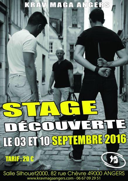 Stage DECOUVERTE 2016 Polar